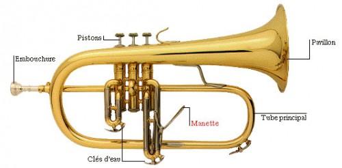 bugle.jpg